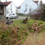 Andrea lichtet mit Josef und Andi den Dschungel vorm Haus.
