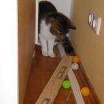Rilla findet hinter dem Schrank längst verlorengeglaubte Schätze.